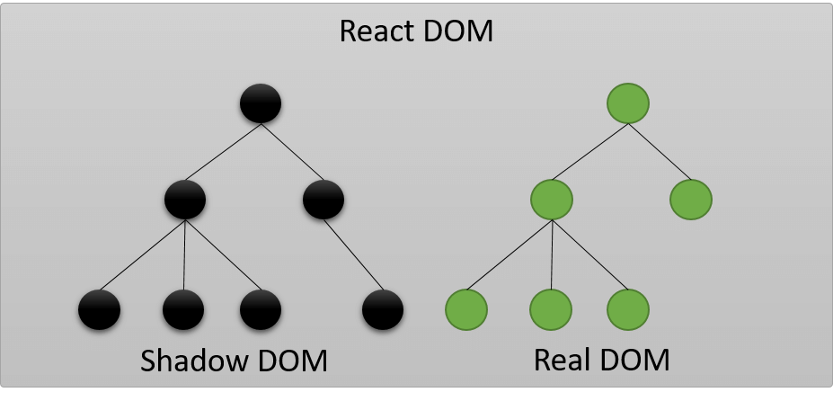React Shadow DOM